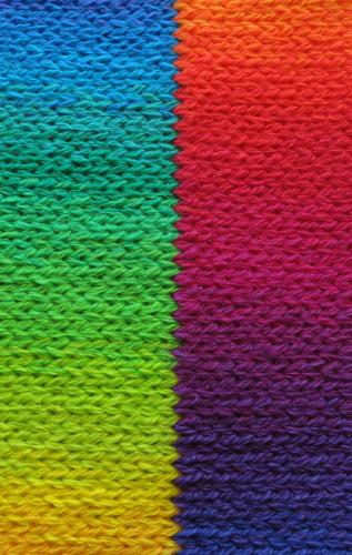 rainbow-merino-study